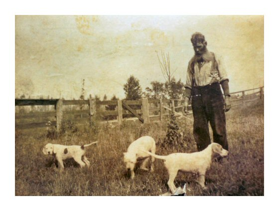 Bill Bamfield with his hunting dog Fannie and pupgs