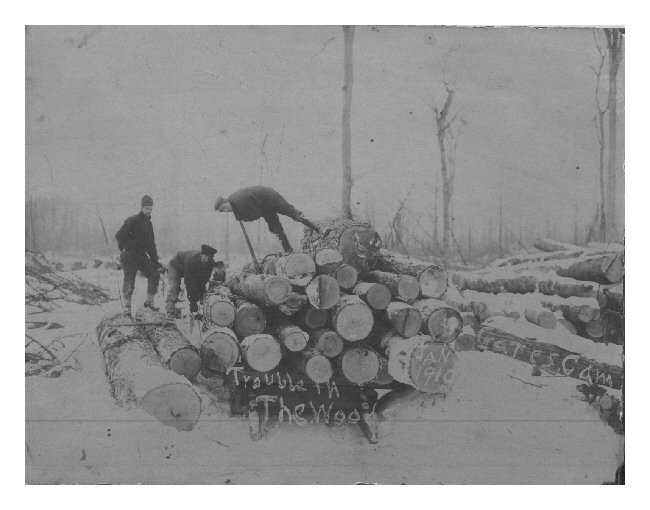 Gate Lumber Camp - Loading Logs