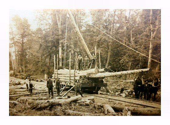 Jammer load cedar poles at Gates Lumber Camp