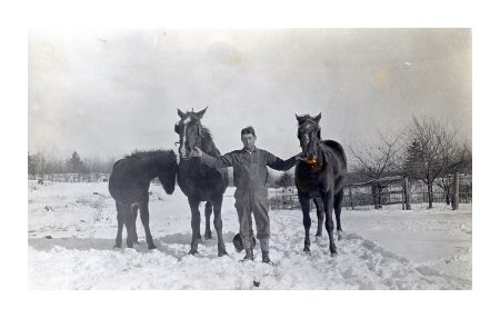 William Sinclair with his horses